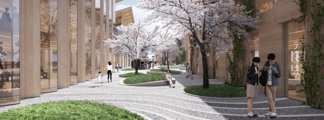 ساختن خانههای چوبی در شهر هوشمند Woven City ژاپن - تویوتا
